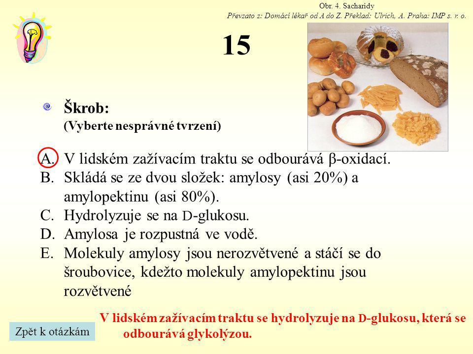 15 Škrob: V lidském zažívacím traktu se odbourává β-oxidací.