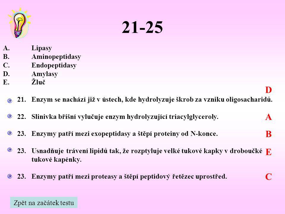 21-25 D A B E C Lipasy Aminopeptidasy Endopeptidasy Amylasy Žluč