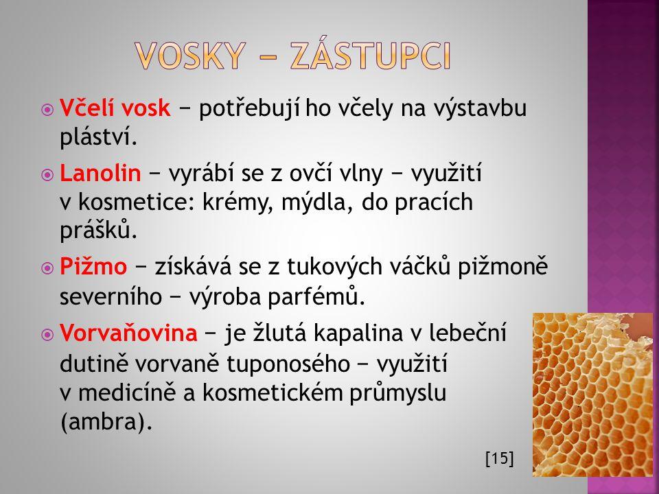 Vosky − zástupci Včelí vosk − potřebují ho včely na výstavbu pláství.