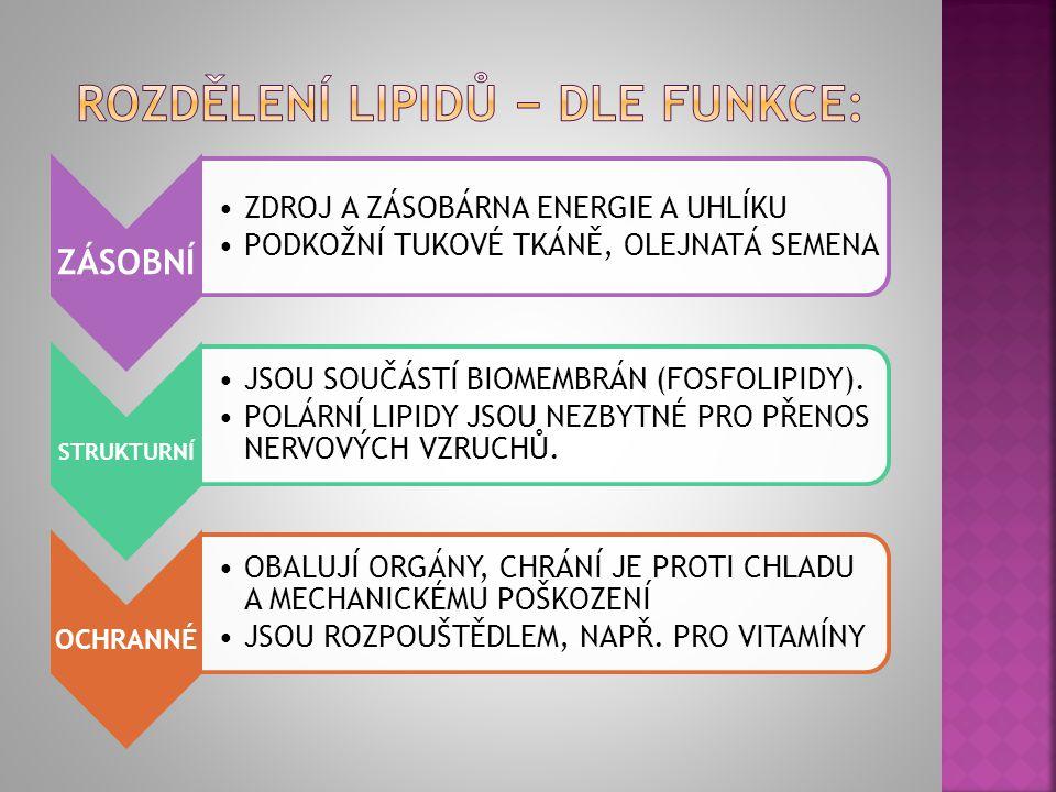 rozdělení lipidů − dle funkce: