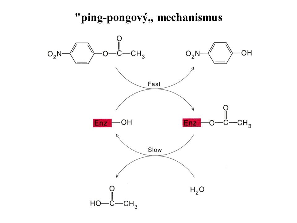 "ping-pongový"" mechanismus"