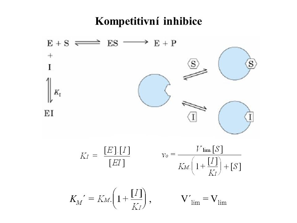 Kompetitivní inhibice