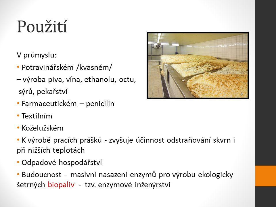 Použití V průmyslu: Potravinářském /kvasném/
