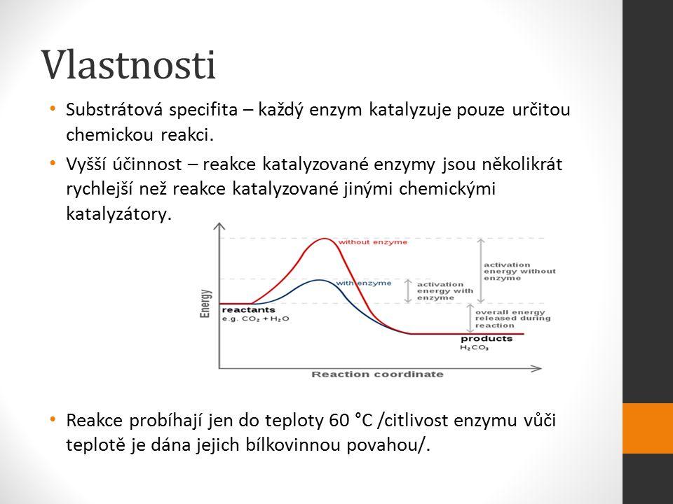 Vlastnosti Substrátová specifita – každý enzym katalyzuje pouze určitou chemickou reakci.