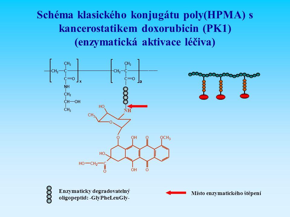 (enzymatická aktivace léčiva)