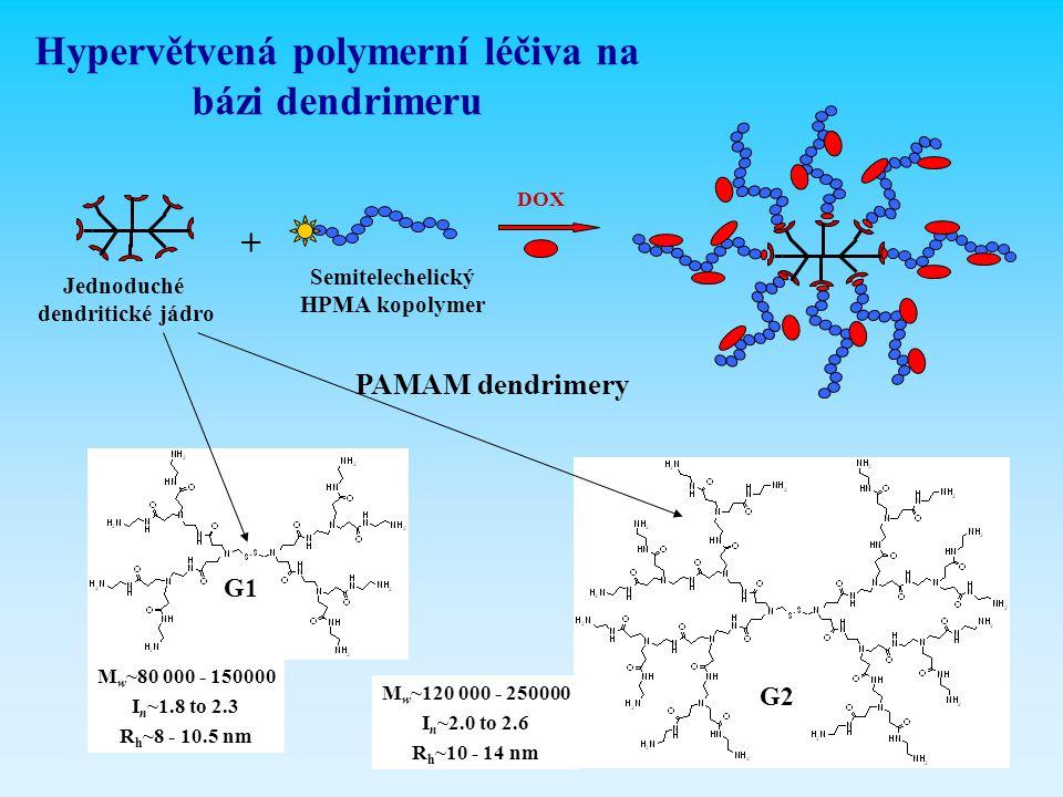Hypervětvená polymerní léčiva na bázi dendrimeru
