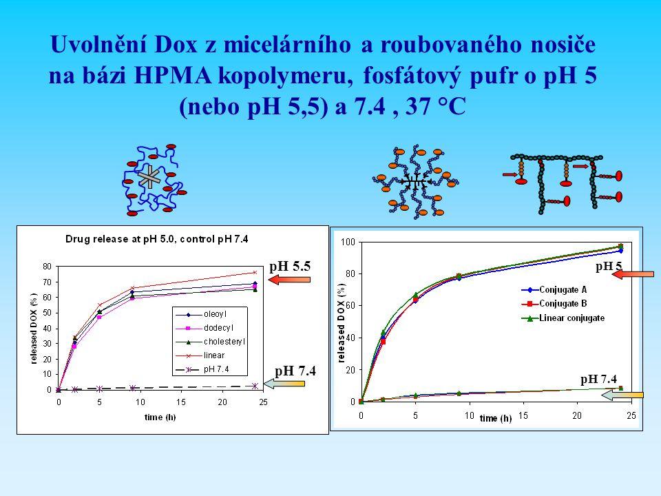 Uvolnění Dox z micelárního a roubovaného nosiče na bázi HPMA kopolymeru, fosfátový pufr o pH 5 (nebo pH 5,5) a 7.4 , 37 °C