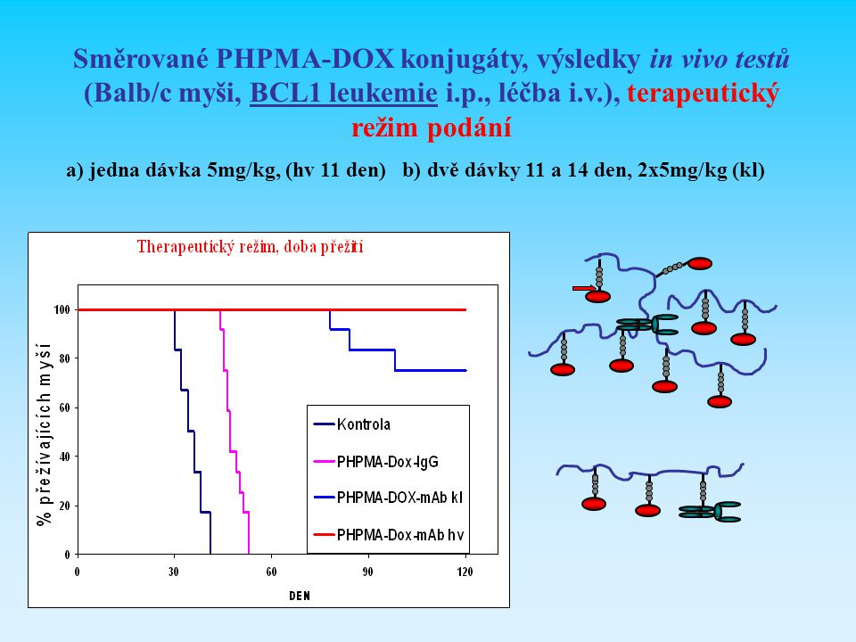 Směrované PHPMA-DOX konjugáty, výsledky in vivo testů (Balb/c myši, BCL1 leukemie i.p., léčba i.v.), terapeutický režim podání