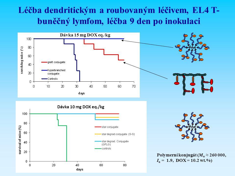 Léčba dendritickým a roubovaným léčivem, EL4 T-buněčný lymfom, léčba 9 den po inokulaci