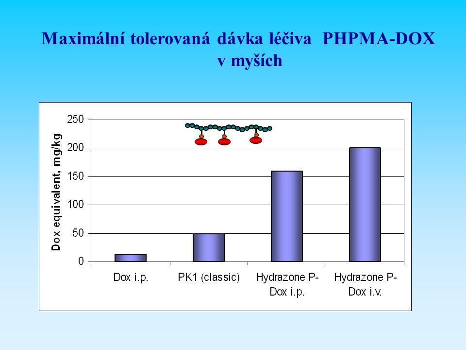 Maximální tolerovaná dávka léčiva PHPMA-DOX v myších