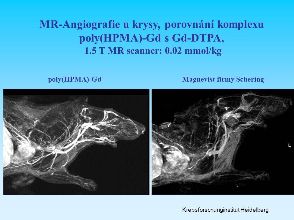 MR-Angiografie u krysy, porovnání komplexu poly(HPMA)-Gd s Gd-DTPA,