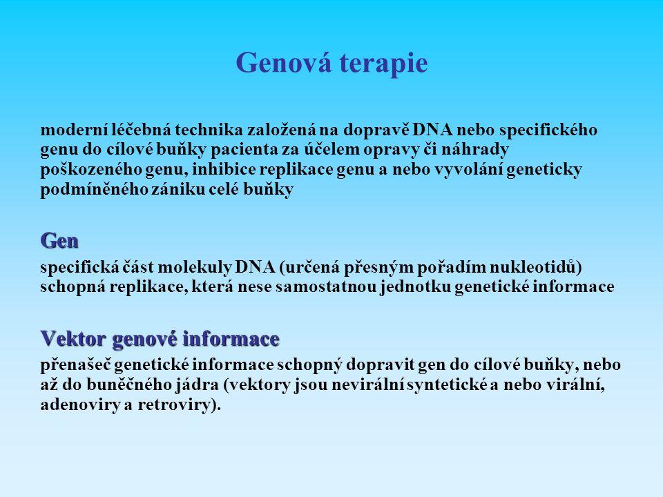 Genová terapie Gen Vektor genové informace