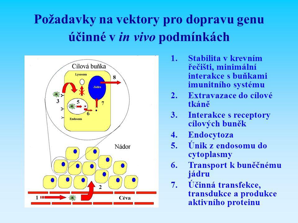 Požadavky na vektory pro dopravu genu účinné v in vivo podmínkách