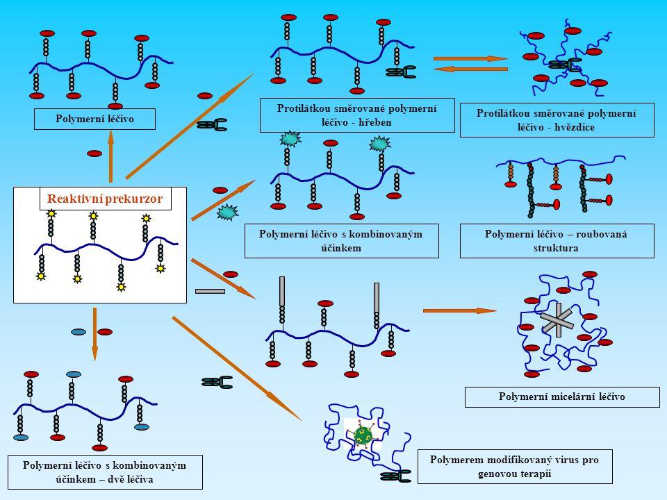 Reaktivní prekurzor Protilátkou směrované polymerní léčivo - hřeben