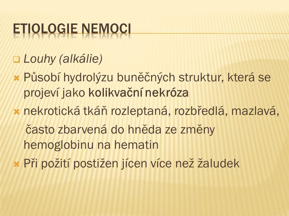 ETIOLOGIE NEMOCI Louhy (alkálie)