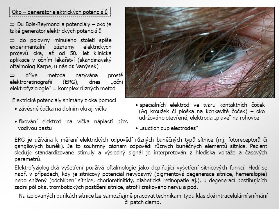 Oko – generátor elektrických potenciálů