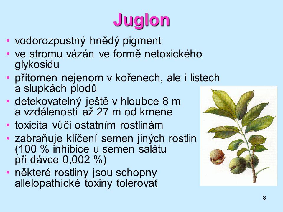 Juglon vodorozpustný hnědý pigment