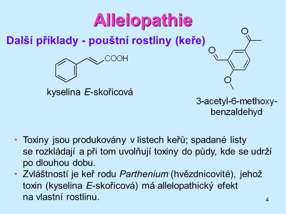 Allelopathie Další příklady - pouštní rostliny (keře)
