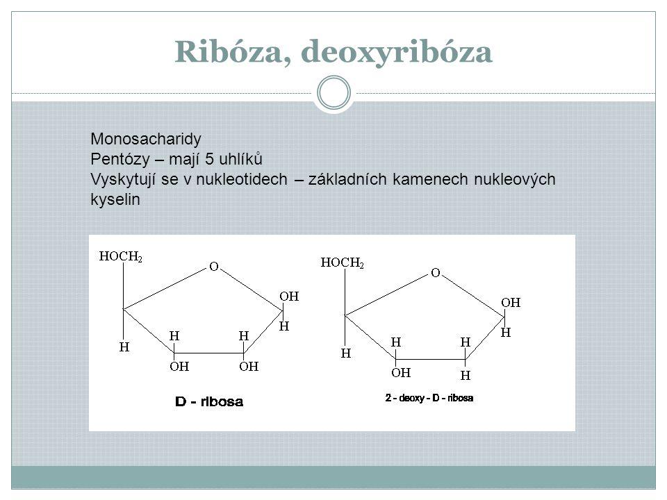 Ribóza, deoxyribóza Monosacharidy Pentózy – mají 5 uhlíků