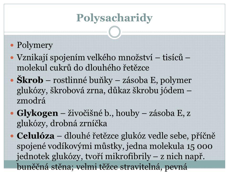 Polysacharidy Polymery