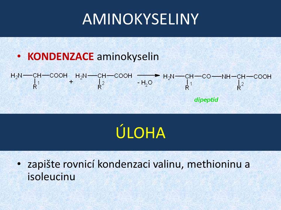 AMINOKYSELINY ÚLOHA KONDENZACE aminokyselin