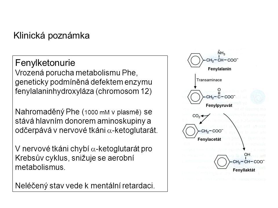Klinická poznámka Fenylketonurie