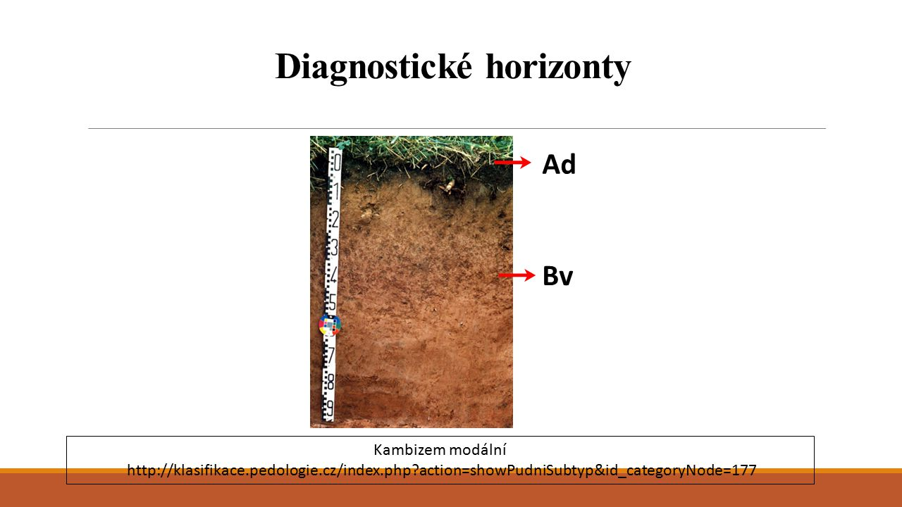 Diagnostické horizonty