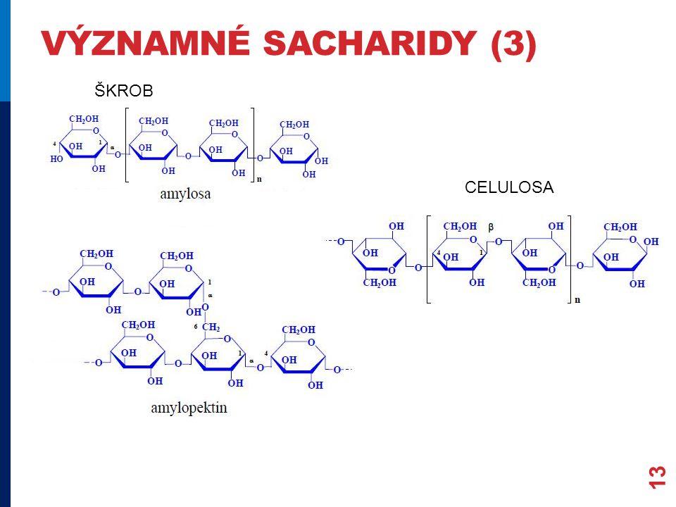 významné sacharidy (3) ŠKROB CELULOSA