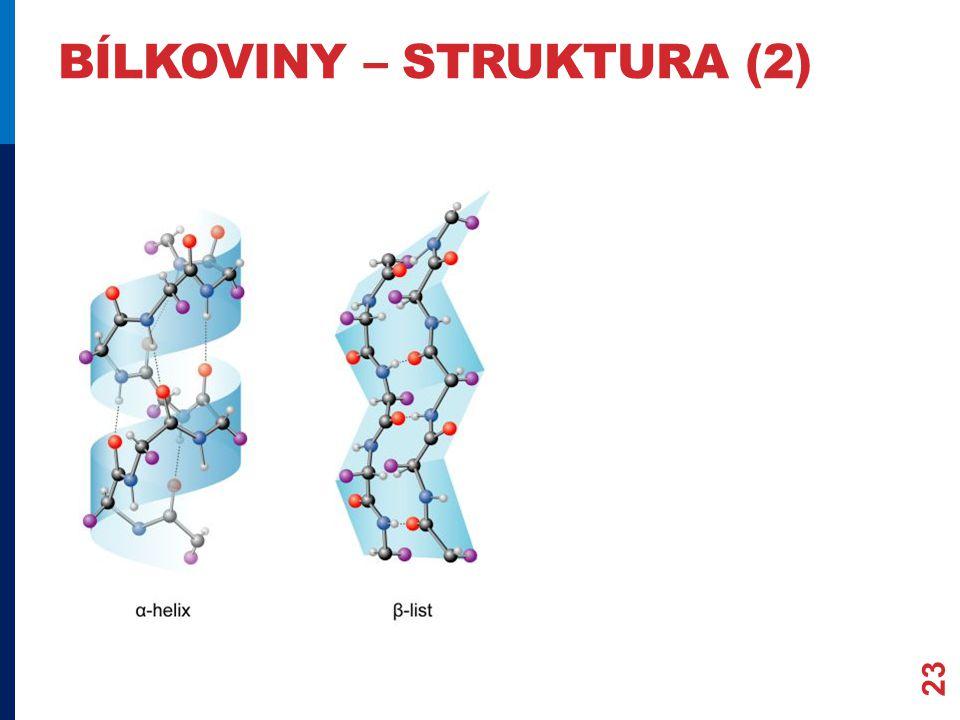 bílkoviny – struktura (2)