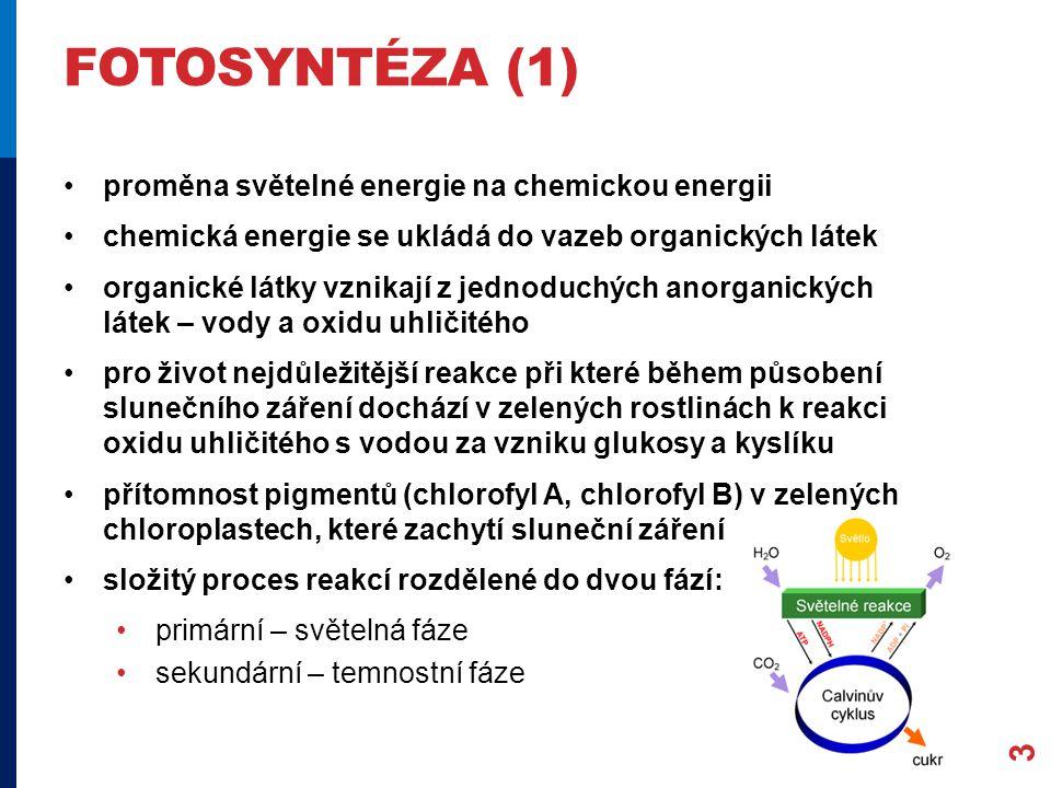 fotosyntéza (1) proměna světelné energie na chemickou energii