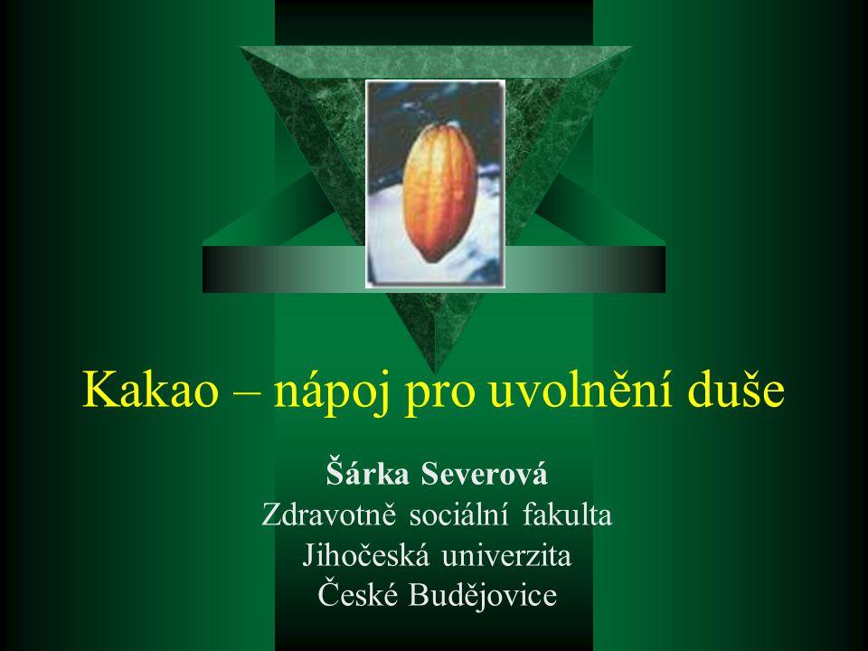 Kakao – nápoj pro uvolnění duše