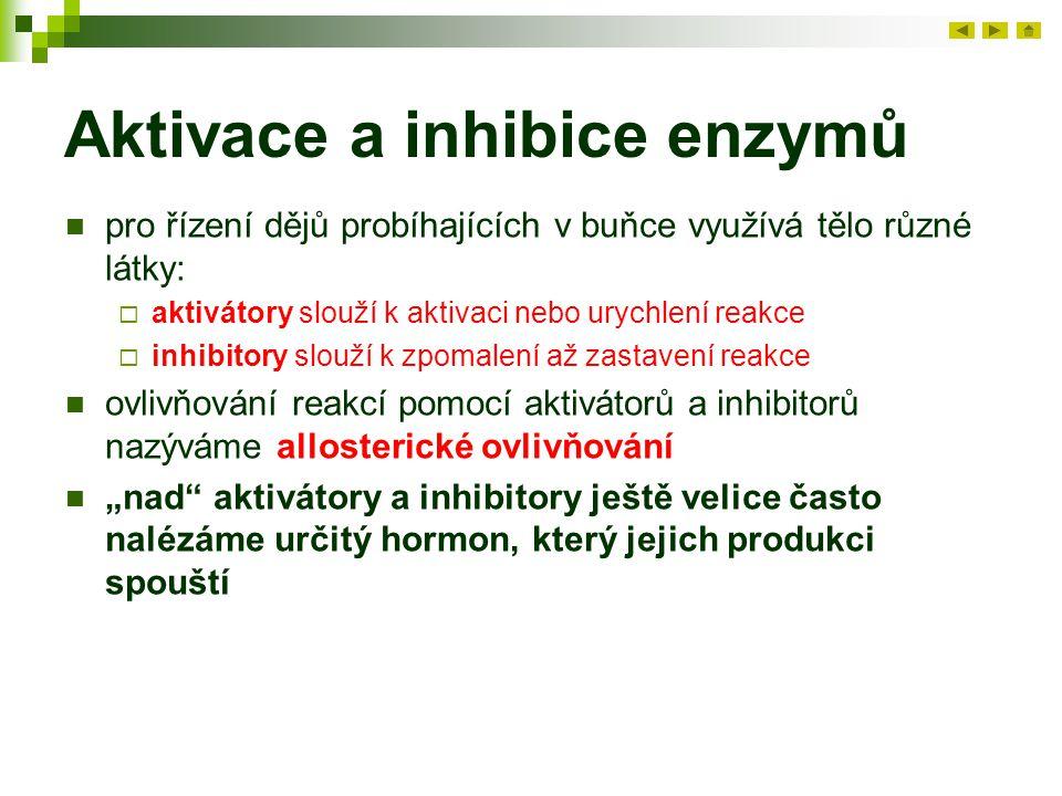Aktivace a inhibice enzymů