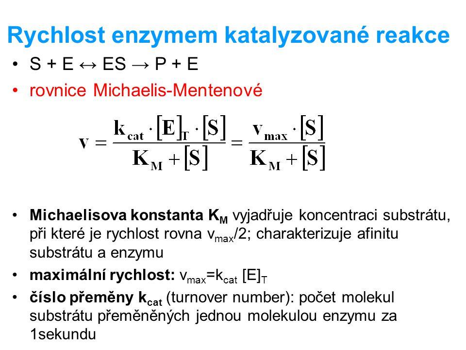 Rychlost enzymem katalyzované reakce