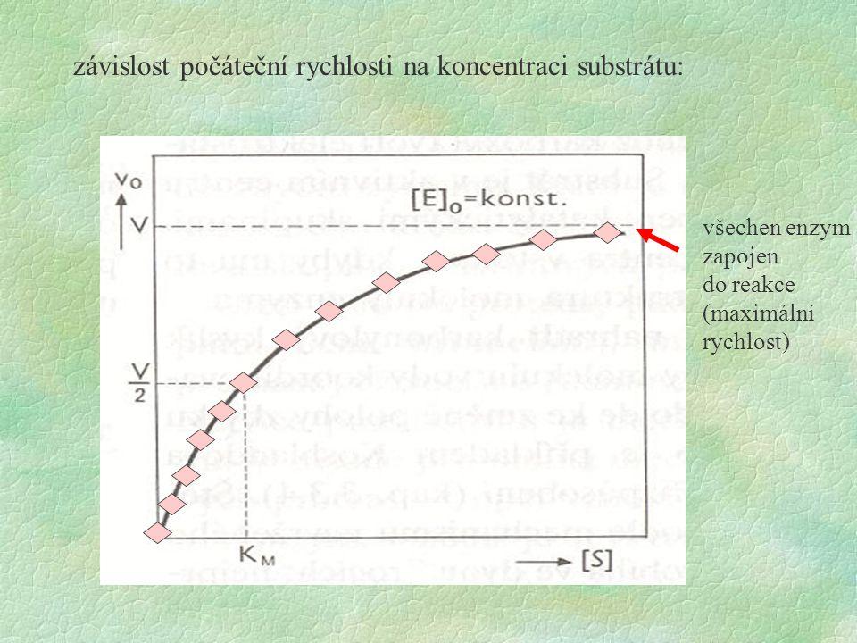 závislost počáteční rychlosti na koncentraci substrátu:
