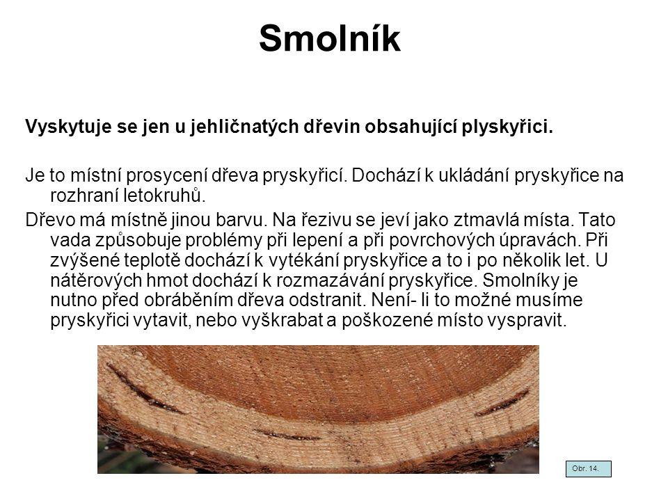 Smolník Vyskytuje se jen u jehličnatých dřevin obsahující plyskyřici.