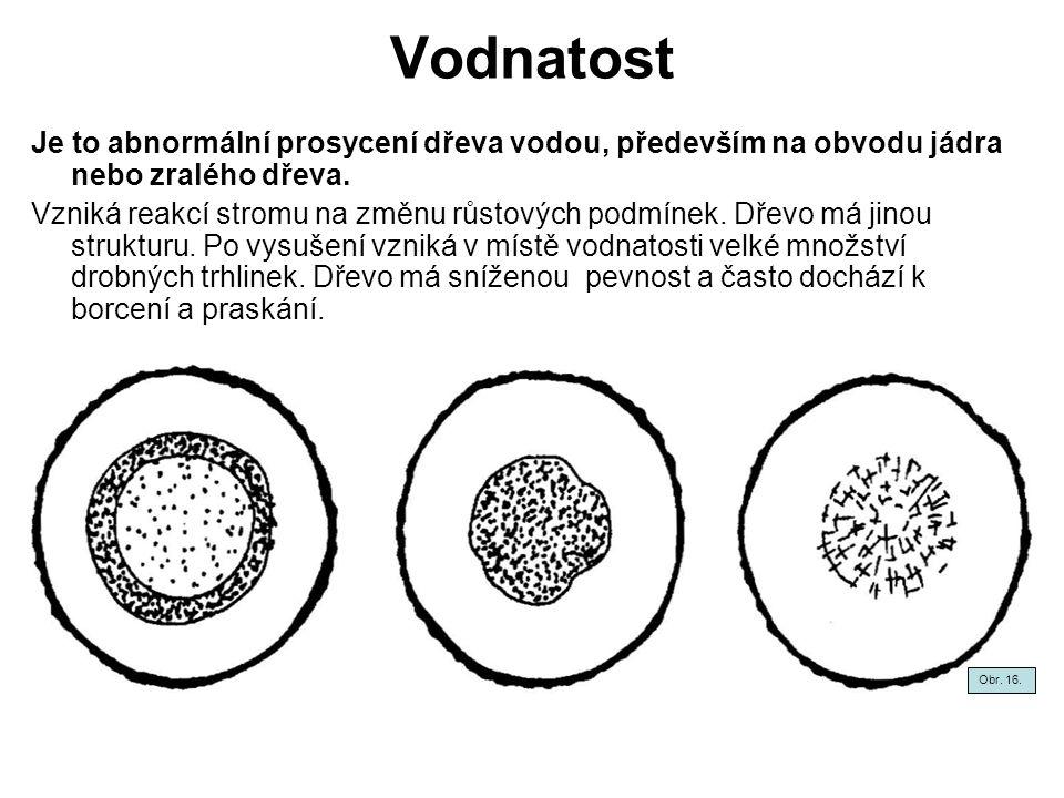 Vodnatost Je to abnormální prosycení dřeva vodou, především na obvodu jádra nebo zralého dřeva.