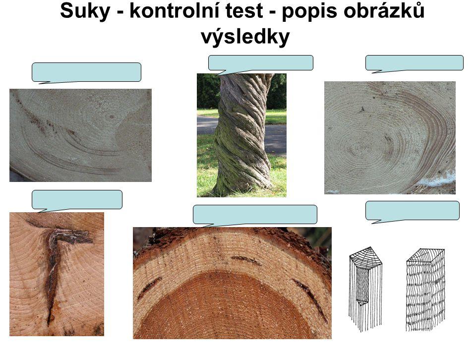 Suky - kontrolní test - popis obrázků výsledky