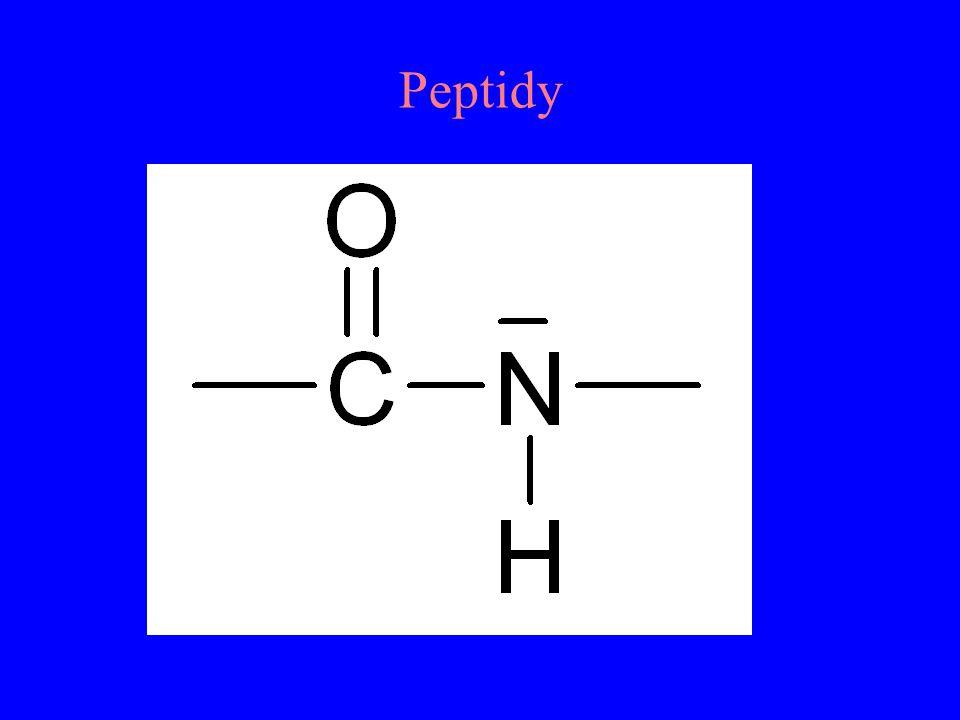 Peptidy