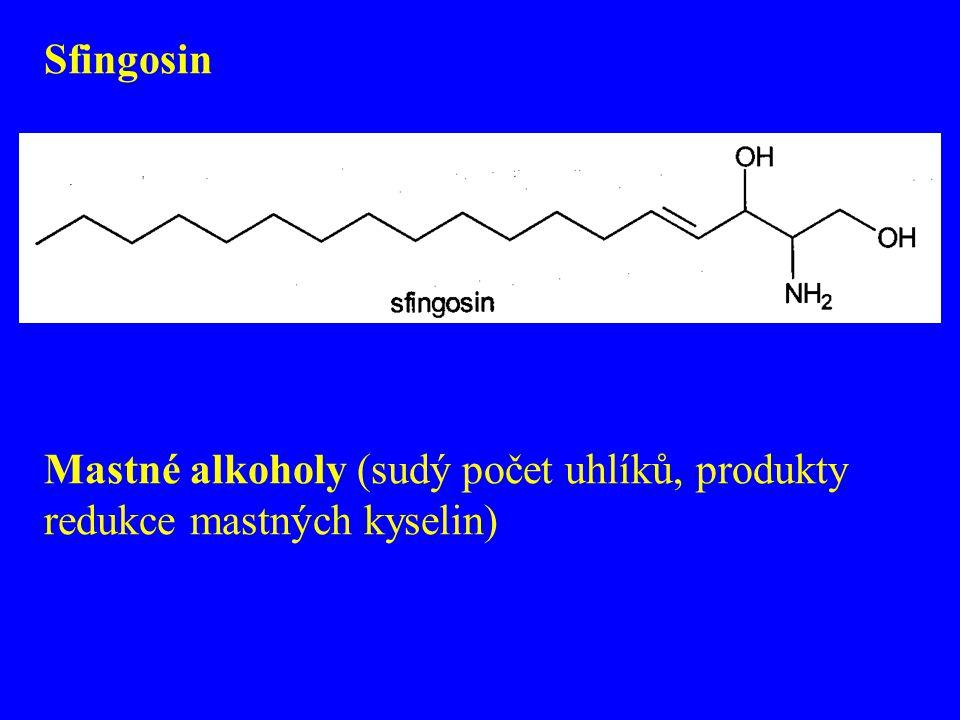 Sfingosin Mastné alkoholy (sudý počet uhlíků, produkty redukce mastných kyselin)