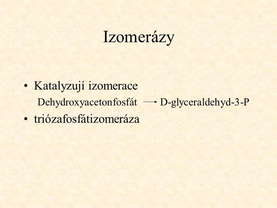 Izomerázy Katalyzují izomerace triózafosfátizomeráza