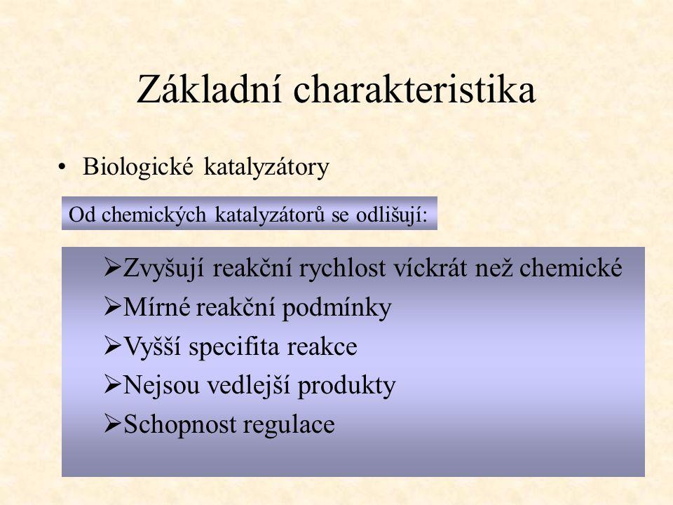Základní charakteristika