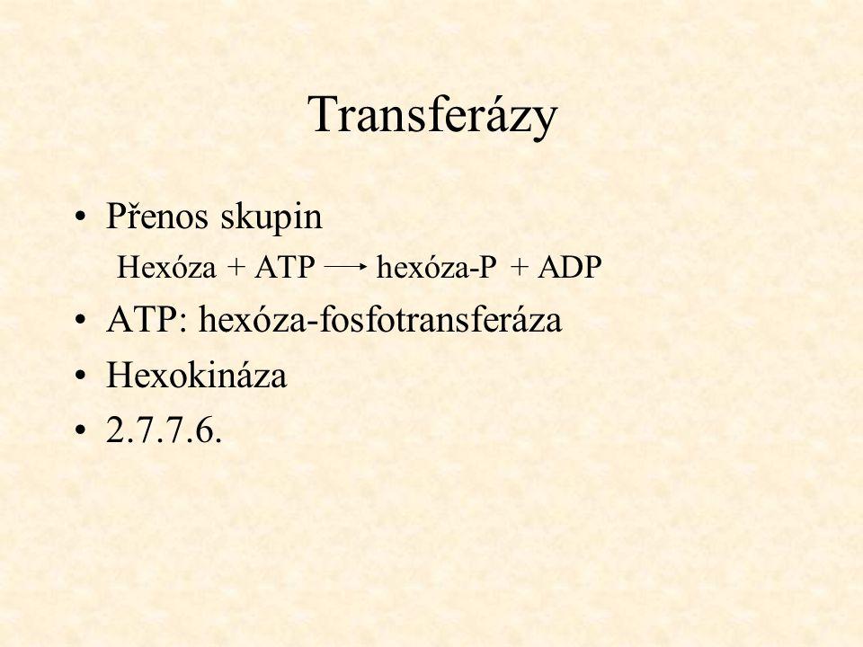 Transferázy Přenos skupin ATP: hexóza-fosfotransferáza Hexokináza