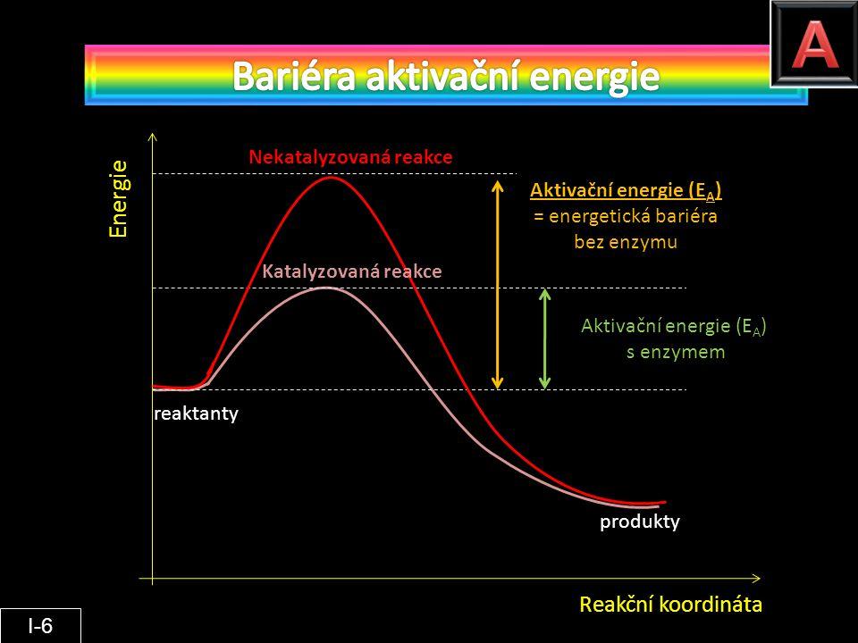 Aktivační energie (EA)