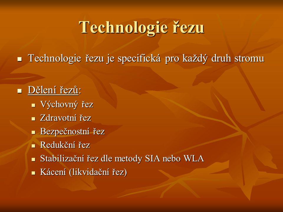 Technologie řezu Technologie řezu je specifická pro každý druh stromu