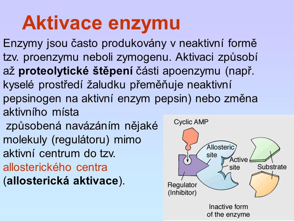 Aktivace enzymu