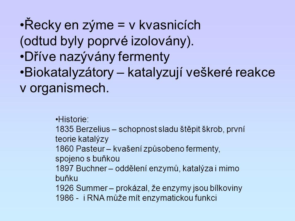 Řecky en zýme = v kvasnicích (odtud byly poprvé izolovány).