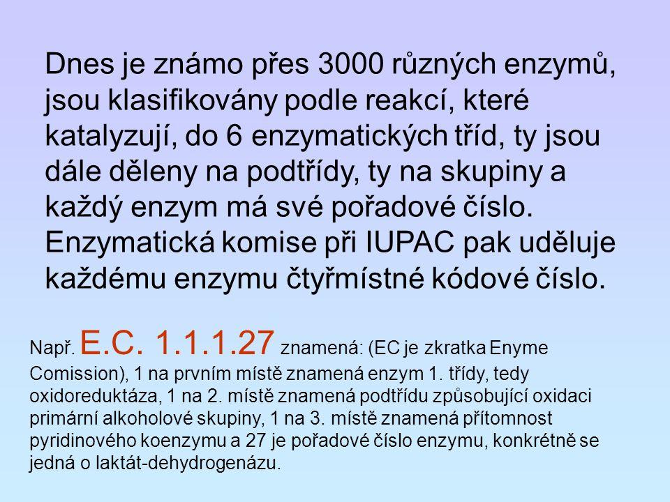 Dnes je známo přes 3000 různých enzymů, jsou klasifikovány podle reakcí, které katalyzují, do 6 enzymatických tříd, ty jsou dále děleny na podtřídy, ty na skupiny a každý enzym má své pořadové číslo. Enzymatická komise při IUPAC pak uděluje každému enzymu čtyřmístné kódové číslo.