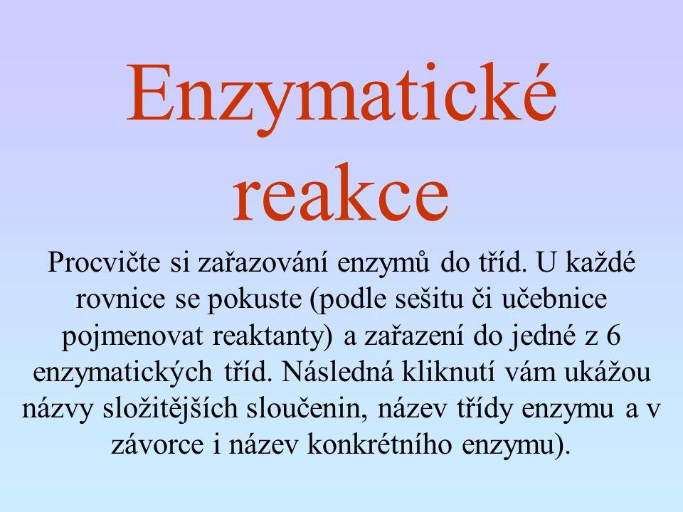 Enzymatické reakce