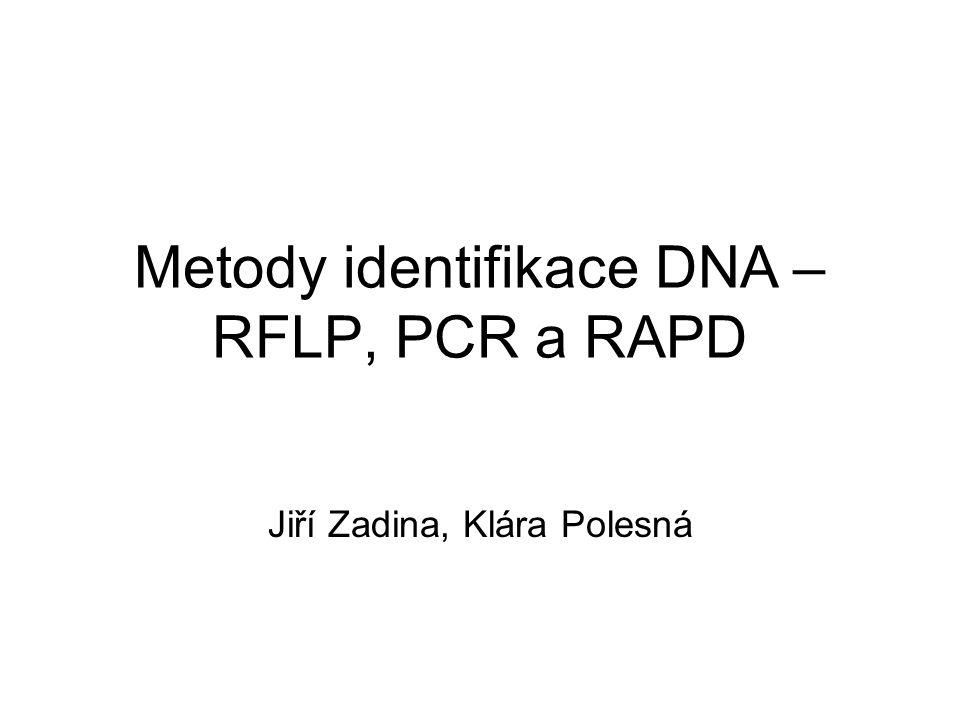 Metody identifikace DNA –RFLP, PCR a RAPD
