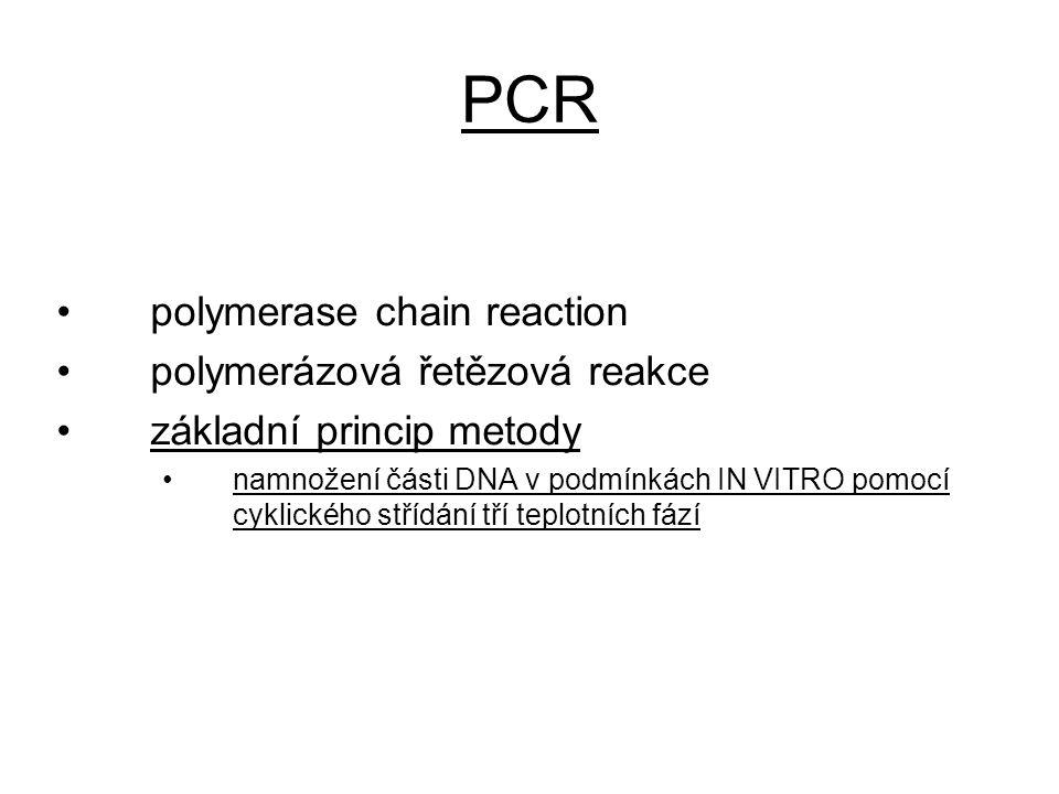 PCR polymerase chain reaction polymerázová řetězová reakce